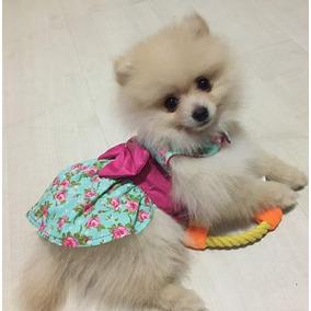 Roupa Pet Vestido Lindo P/ Caes E Gatos Frte Gratis Promoção