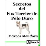 Fox Terrier Pelo Duro Libro Adiestramiento Cachorro Adulto