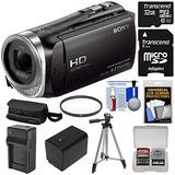 Sony Handycam Hdr-cx455 Cámara De Vídeo De 8gb Wi-fi Hd De