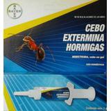 Blattanex Hormigas