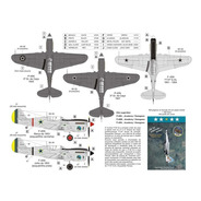 Decal P-40 (part 2) 1:72 Fcm Decals Fcm72023