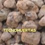 St Leca Arcilla Expandida Para Sustratos Y Orquideas Envíos
