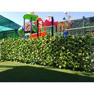 Follaje Expandible Premium Green Line Envio Gratis