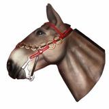 Cabeça De Cavalo - Boi - Mula - Decoração