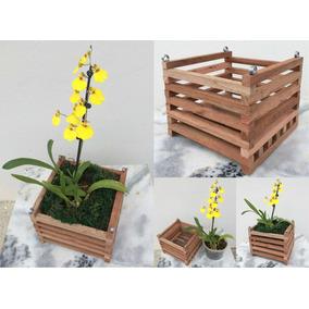Cachepot De Madeira Rústica Porta Vaso De Orquídea Kit 10 Un