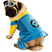 Disfraz Mascota Despicable Me 2 Minion Pet Mediano