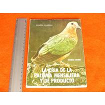 Guarro Vilarnau, La Cría De La Paloma Mensajera Y De Product