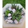 Cactus Y Suculentas Exclusivo Arreglo En Opalina Y Hierro