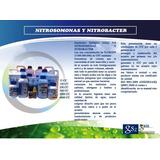 Bacterias Nitrificantes 2000cc Para Acuarios