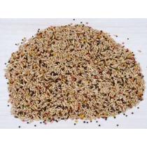 Mistura Sementes Ração Para Canário Belga 15kg