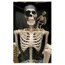 Esqueleto De Pirata Tamaño Real Articulado
