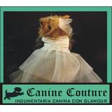 Vestido De Novia Fiesta Para Tu Perra - Canine Couture ®