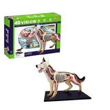 Modelo Anatomía Tedco 4d Perro Enseñanza Veterinaria