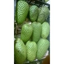 Guanabano En Fruta Y Pulpa Congelada