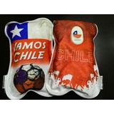 Guatero Electrico, Diseño Vamos Chile!, Certificados