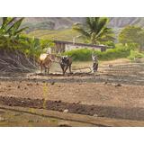 Pinturas De Parede Quadro Paisagem A Óleo Tamanho 60x80