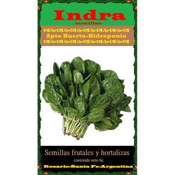 50 Semillas De Espinaca Apto Hidroponia/huerto