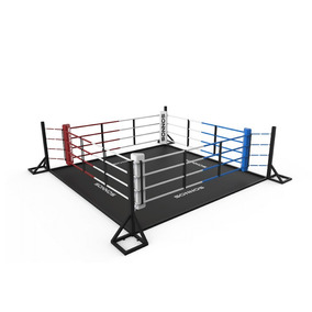 Ring Boxeo Inicial C/piso Ideal Gym Marca Sonnos Fabricantes