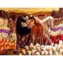 Pintura Tela Cavalos Paisagem Quadro Abstrato Flores Rosas
