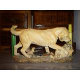 Perro Golden Retriever Decoración.