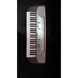 Organo O Teclado Musical Casio