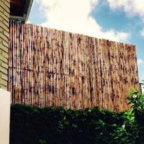 Cañas Bambu Tacuara Cercos Techos Colocacion S/cargo Fact A