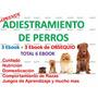 Aprende Adiestramiento Canino Pack De 6 Ebook Educacion