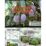 Manual Pdf Cultivo Del Mango