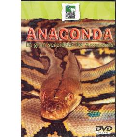 Animal Planet - Anaconda - La Gran Serpiente Del Amazonas