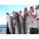 Guia Pesca Embarcado Mar Del Plata Salmones Excursiones