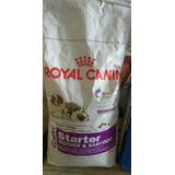 Royal Canin Giant Starter Mother @babydog 15 Kilos