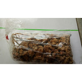 3kg Castatanha De Caju Caramelizada