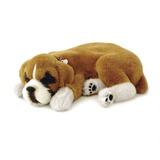 Filhote Cachorro Boxer Perfect Petzzz - Respira
