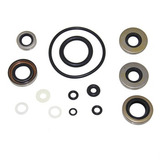 Kit Retenes Pata Johnson Evinrude 9.9-15hp Motor Fuera Borda