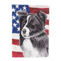 Usa La Bandera Americana Con El Collie De La Frontera Bander