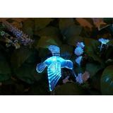 Colibrí Mariposa Libélula - Figura A Energía Solar - Led Rgb