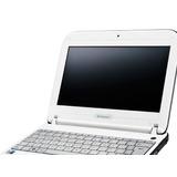 Netbook Lenovo (del Gobierno)