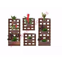 4 Jardim Vertical 8 Cachepôs