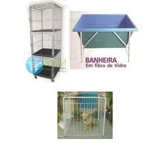 Conjunto Banho E Tosa - Canil, Banheira, Cercado
