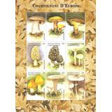 1999 Islas Comoros Hoja Souvenir Hongos De Europa Mnh