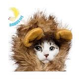Traje De Melena De León Para Perros Y Gatos - Gratis Empluma