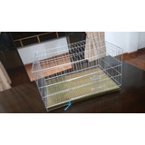 Jaulas Grande Para Conejo De 60x45 ( La Molina)