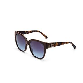 586c0d9dfc9df Oculos Sol Colcci C0060 Marrom L Azul Degrade F6-c0060j0886