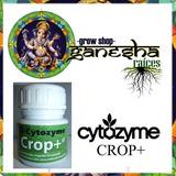 Crop + X 50cc - Bioestimulador Orgánico - Ganesha Grow