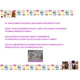 Alimento Perros Gatos Artesanal