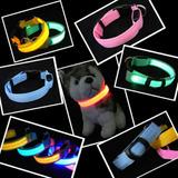 Collar Led Perros Y Gatos Varios Colores