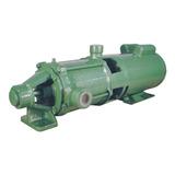 Bomba De Irrigação Multiestagio Thebe P-11/4 Nr 3cv Weg 220v