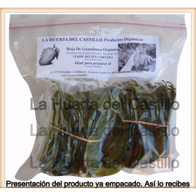 Hojas De Guanábana Orgánica Frescas Recién Cortadas Té 150 G