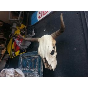 Antiguo Cráneo De Toro Original. Muy Decorativo!