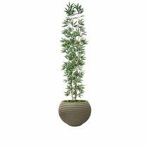 Bambú Mossô Artificial Verde Reto Vaso Plastico Lindo 1,80 M